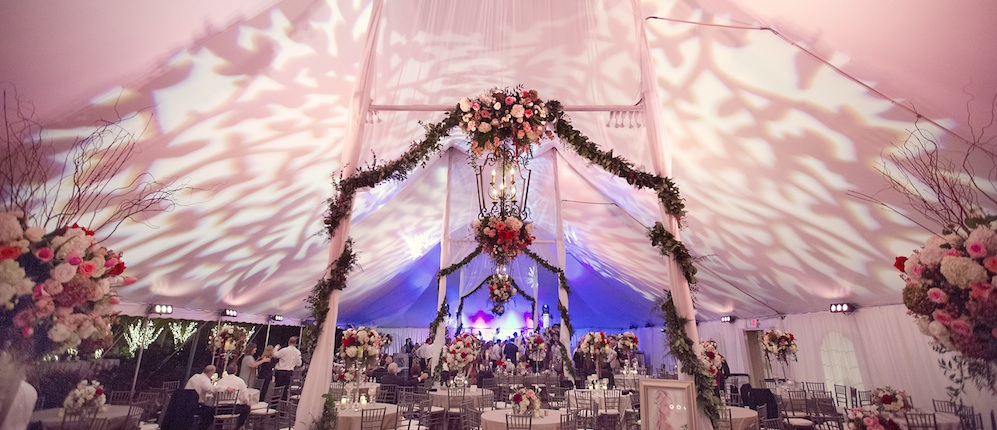 Tent wedding lighting Clark Gardens Sarah Kate