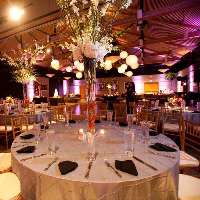 BEYOND Venue Lighting - Arboretum