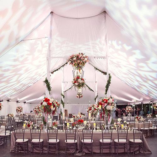 blush pink pattern projections tent